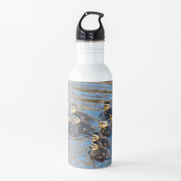 WATERFOWL ~ Pacific Black Duck BCXEND4K by David Irwin 06012021 Water Bottle
