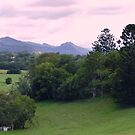 Mt.Warning and Murwillumbah Art Gallery Northern NSW Australia  by Virginia  McGowan