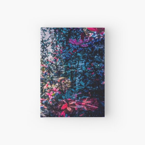 Haunted forest in the rain Hardcover Journal