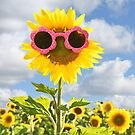 sunglasses on sunflower by Maria Dryfhout