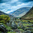 Nature of Scotland by stonemasonadam