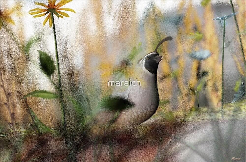 Little Paradise by maraich