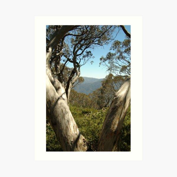 Joe Mortelliti Gallery - Mt Buller view from Bluff Hut on Mt Stirling, alpine Victoria, Australia. Art Print