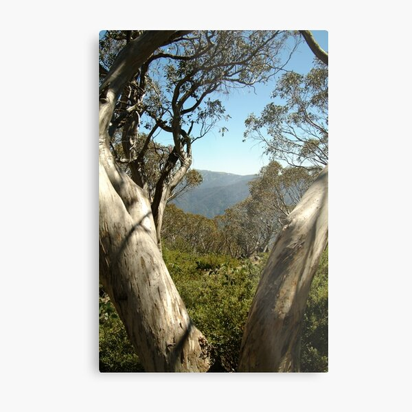 Joe Mortelliti Gallery - Mt Buller view from Bluff Hut on Mt Stirling, alpine Victoria, Australia. Metal Print