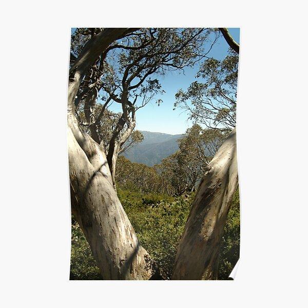 Joe Mortelliti Gallery - Mt Buller view from Bluff Hut on Mt Stirling, alpine Victoria, Australia. Poster