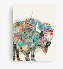 into the wild the buffalo Canvas Print