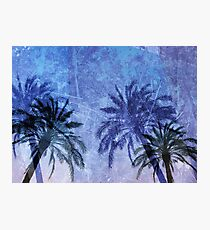 Cool, unique modern abstract blue palm tree digital art design Photographic Print