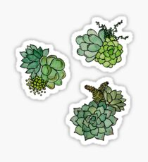 Fresh Succulent Pattern Sticker