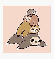 Sloth Stack Photographic Print