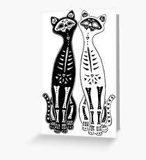 Opposites Attract Kitten Bones Greeting Card