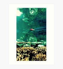 Little Fish in a Big Blue World Art Print