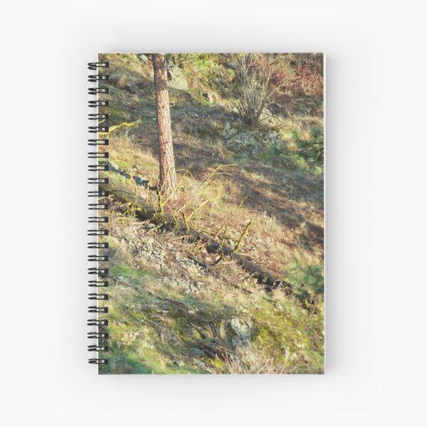 Tree Down Hillside Spiral Notebook