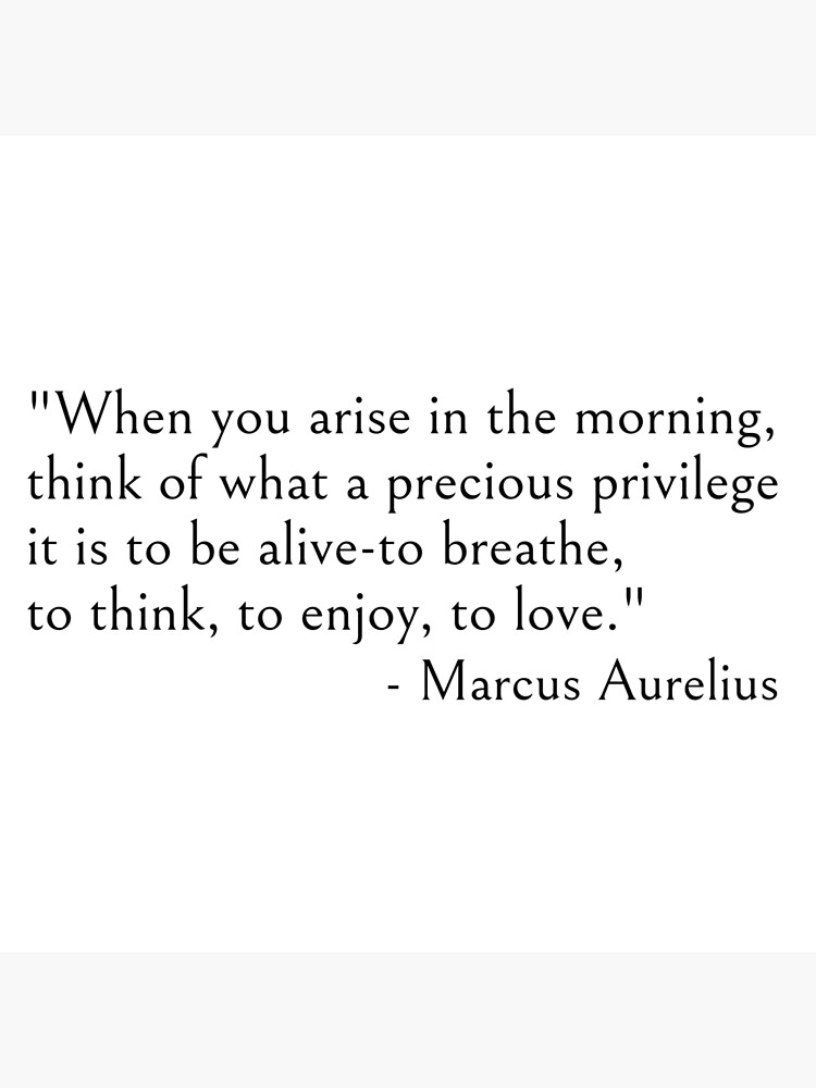 Marcus Aurelius, When you arise in the morning think of what a precious privilege it is to be alive by ds-4