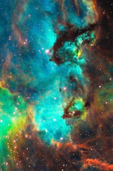 Quot Galaxy Seahorse Large Magellanic Cloud Tarantula