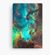 Galaxy / Seahorse / Large Magellanic Cloud / Tarantula Nebula Metal Print