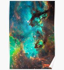 Galaxy / Seahorse / Large Magellanic Cloud / Tarantula Nebula Poster