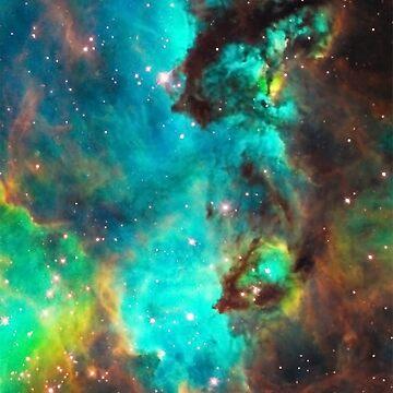Galaxia / Caballito de mar / Gran nube de Magallanes / Nebulosa de la tarántula de boom-art
