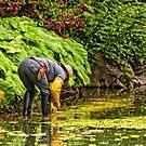garden worker  by Manon Boily