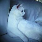 """""""Big Lucy Watching the American Idol Finale"""" by hickerson"""