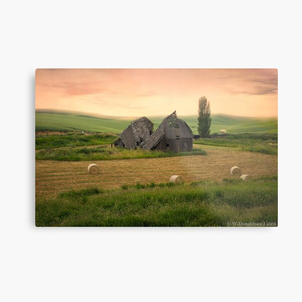 Mornings Lost Metal Print