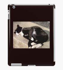 Kitty Yoga iPad Case/Skin