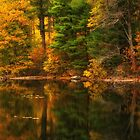Autumns Calm by Karol Livote