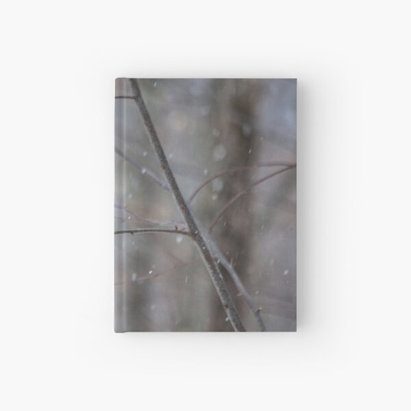 Cardinal In The Snow Hardcover Journal