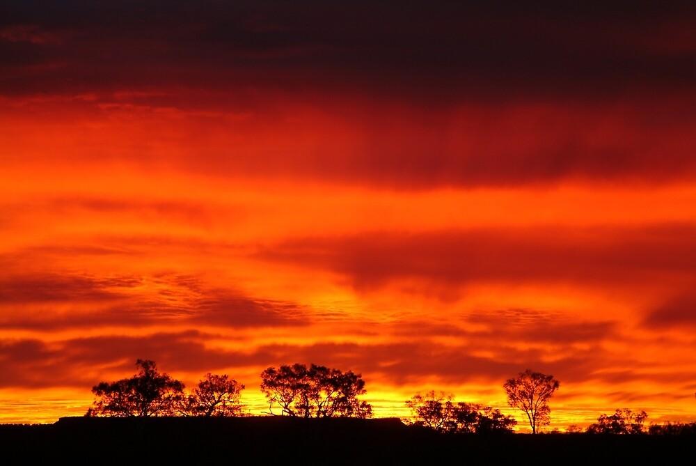 Joe Mortelliti Gallery - Sunrise, Batton Hill Camp, Simpson Desert, Northern Territory, Australia. by thisisaustralia