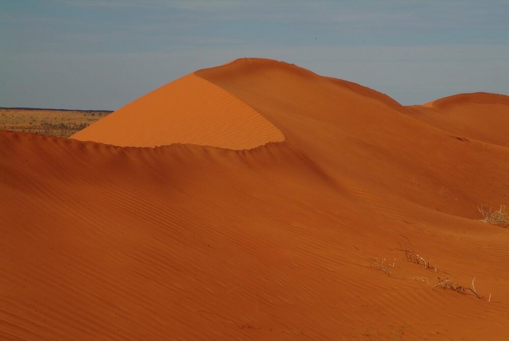 Joe Mortelliti Gallery - Dune, North Simpson Desert, Northern Territory, Australia.  by thisisaustralia