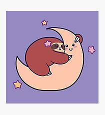 Sleeping Moon Sloth Photographic Print