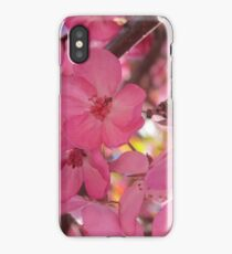 Bright Pink Cherry Blossoms iPhone Case/Skin
