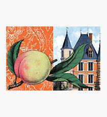 Peachy Keen Hard Journal Cover Photographic Print