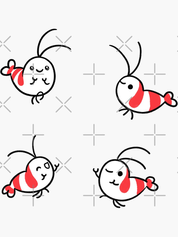 Shy Shrimp pattern by pikaole