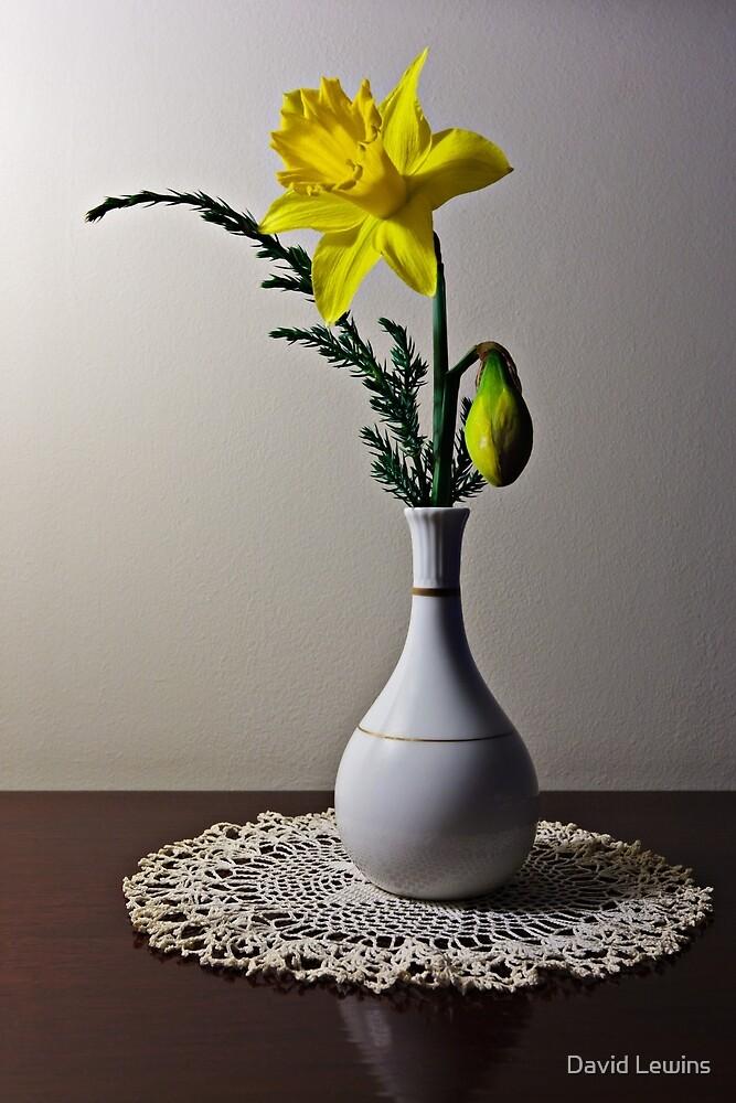 Daffodil by David Lewins