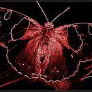 Mothman by Kaye Bel -Cher