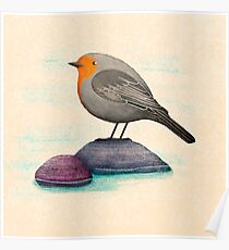 a robin bird on a rock Poster