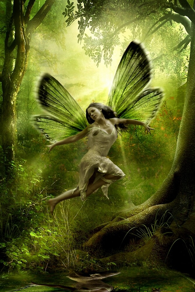 Enchanted by Cliff Vestergaard