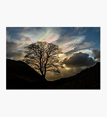Sycamore Gap Silhouette Photographic Print