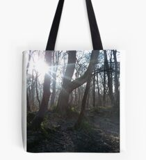 Winter Sun Through the Trees, Meanwood Trail Tote Bag