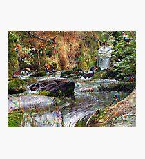 Avian Spring Photographic Print
