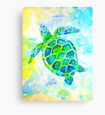 Sea Turtle with background by Jan Marvin Canvas Print