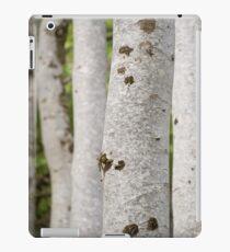 Gruinard Beeches iPad Case/Skin