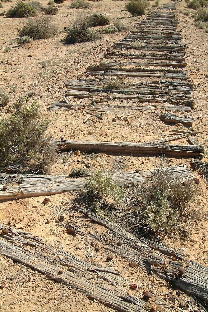 Joe Mortelliti Gallery - Ruins of a railway, Old Ghan Railway, South Australia. by thisisaustralia