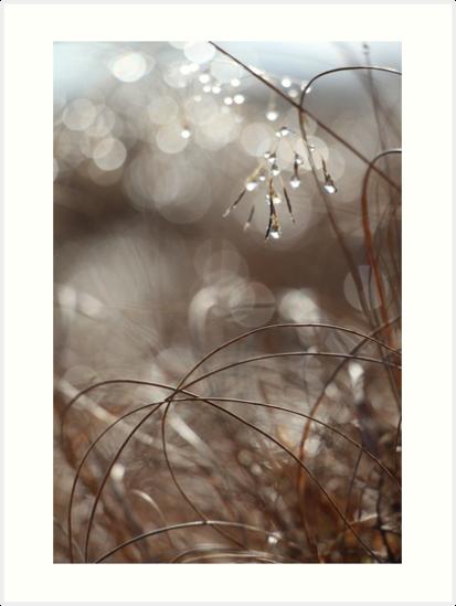 Pure Morning II by Kitsmumma