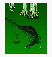 Swamp Dragon Photographic Print