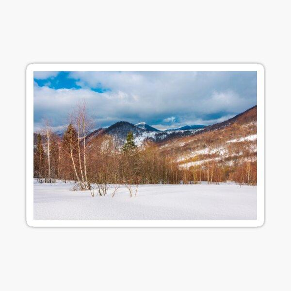 winter landscape of Uzhanian National Nature Park Sticker
