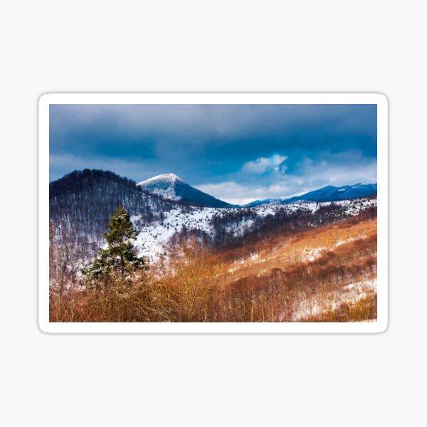 winter in Uzhanian National Nature Park Sticker