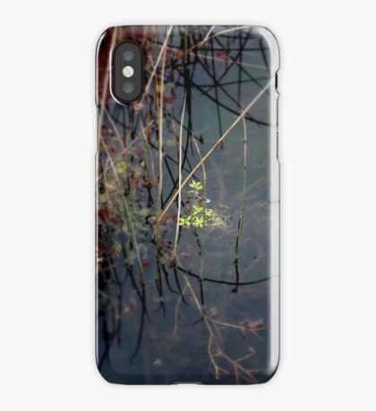Salisbury Waters iPhone Case/Skin