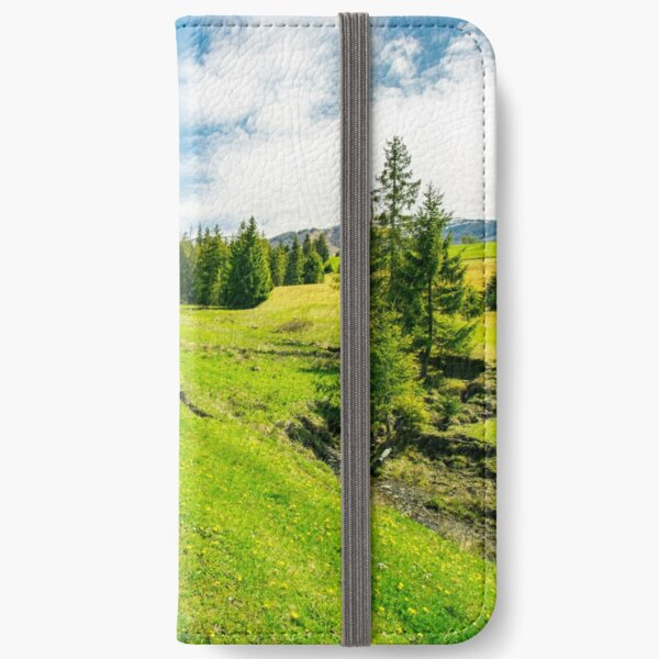 wonderful springtime weather in mountains iPhone Wallet