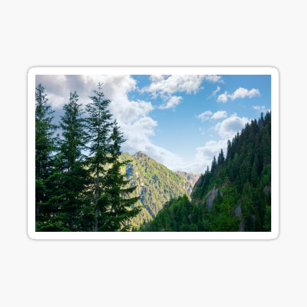 beauty of Fagaras mountains Sticker